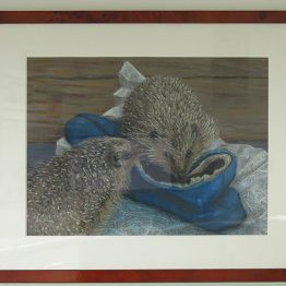 Pastel schilderij Egeltjes, Atelier for Hope Doetinchem